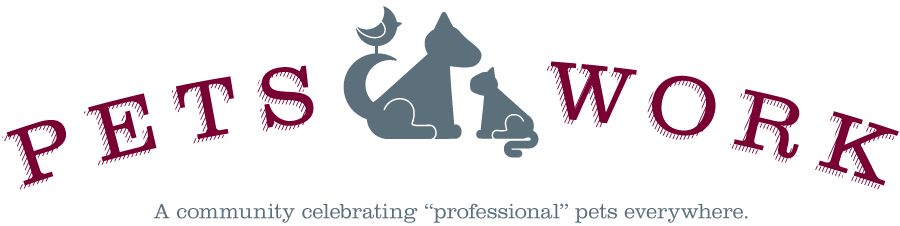 Pets Work - A community celebrating 'professional' pets everywhere.