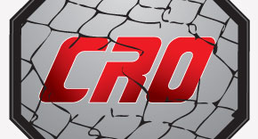 A/B Testing – Cage Fighting for the Web
